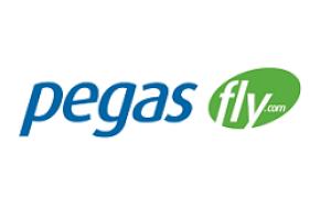 Горячая линия Pegas Fly (Икар)