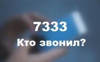 7333 — что это за номер телефона?