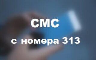 СМС с номера 313 на Теле2 — почему приходят
