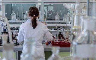 Лаборатории-кубани.рф: войти в кабинет, как получить результаты анализов