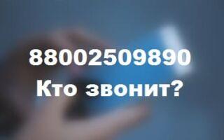 88002509890 – кто звонит с этого номера телефона