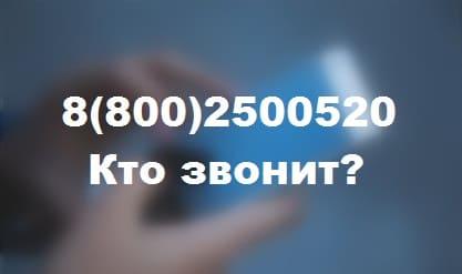 88002500520 — чей это телефон и кто звонит?